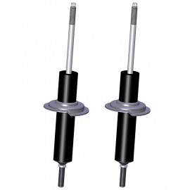 RENAULT R12 front shock absorbers brand RECORD
